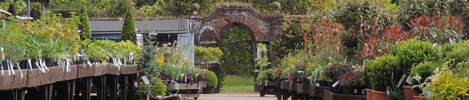 Plant Centre Gallery banner
